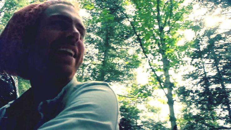 The Northern Woods - Trevor Hall