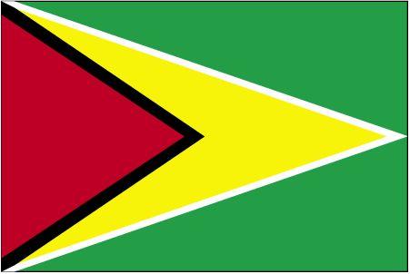 Country Flags: Guyana Flag