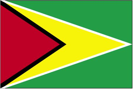 Country Flags: Guyana Flag