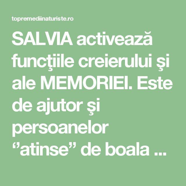 SALVIA activează funcţiile creierului şi ale MEMORIEI. Este de ajutor şi persoanelor ''atinse'' de boala Alzheimer - Top Remedii Naturiste
