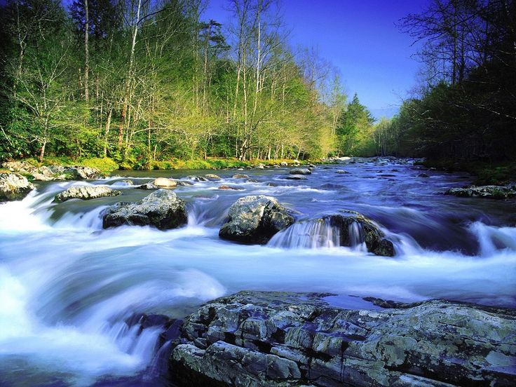 4 Little Known Facts About the Pigeon Rive - http://www.smokymountainrafting.com/blog/whitewater-rafting-tennessee/4-little-known-facts-pigeon-river/