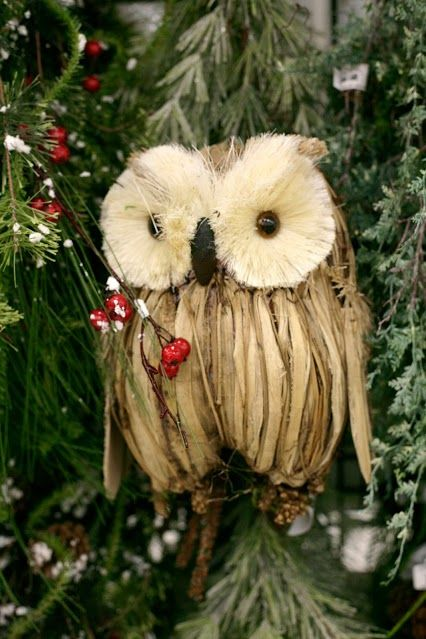 The owl trend continues for the holidays at the Bonney ...