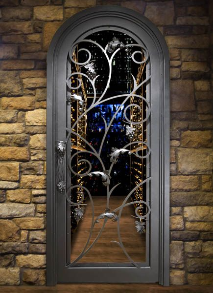 55 Best Iron Doors Images On Pinterest Entrance Doors