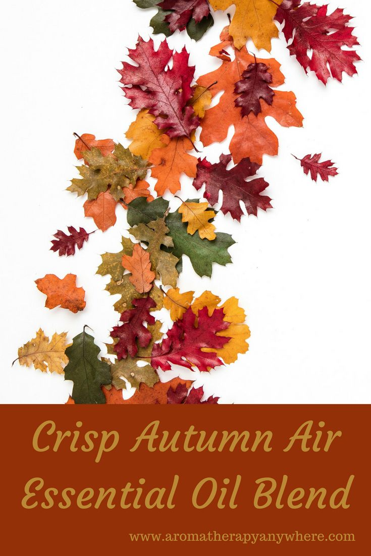 Crisp Autumn Air Essential Oil Blend