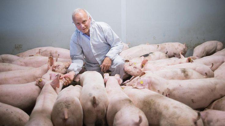 Vorwurf der Tierquälerei: Peta-Aktivisten zeigen CDU-Politiker an