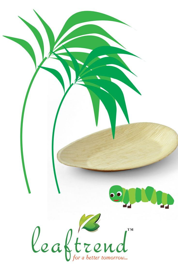 Disposable eco palm plates made from fallen palm leaf are known as natural green plates areca leaf plates are used as dinnerware tableware and party ...  sc 1 st  Pinterest : best disposable plates - pezcame.com