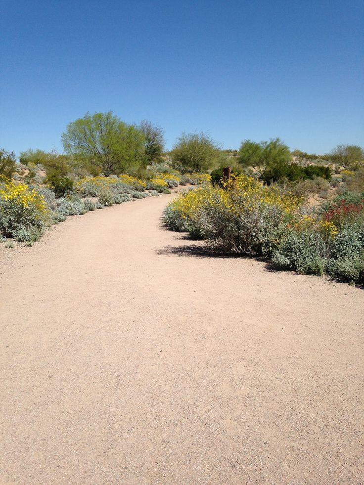 Running trail at Veteranu0027s Oasis Park