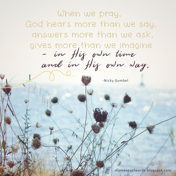 ...for your Father knows exactly what you need   even before you ask him!   - Matthew 6:8     ♥   #pray #godknowswhatyouneed #prayer #god #answer #inspirationalquotes #wisewords #encouragement