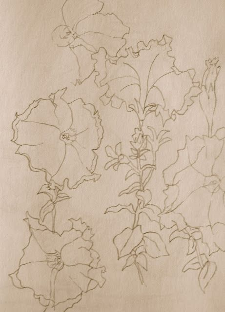 Contour Line Drawing Assignment : Best images about drawing assignments on pinterest