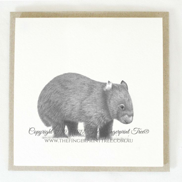 Gift card - Wombat:  Cards! by The Fingerprint Tree® is our couture range of gift cards featuring illustrations by Ray Carter, Chief Artist & Founder.  Made-to-order and Giclée printed at our Southern Highlands studio.   We sell direct to the public and to retailers.