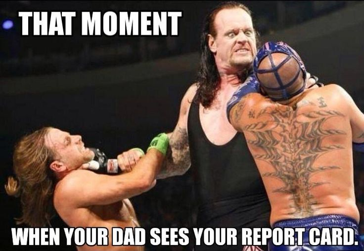 Image result for wwe memes