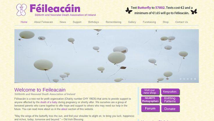 Feileacain Website