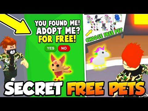 Secret Locations Areas For Free Legendary Pets In Adopt Me Roblox Youtube In 2020 Adoption Secret Location Pets