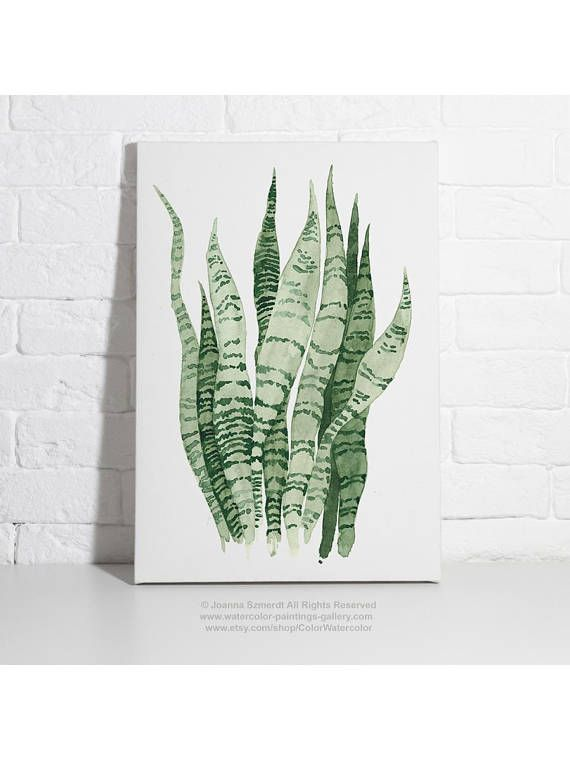 Sansevieria Snake Plant Watercolour Painting Living Room Decor