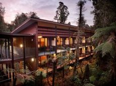 In Franz Josef, the luxury rainforest retreat Te Waonui. Resort. Nestled amongst native West Coast rainforest, this unique property is a five-star hotel, designed with utmost care of its precious environment. #unique #experiences #newzealand #gourmet #journeys #luxury #premium #travel #sustainable