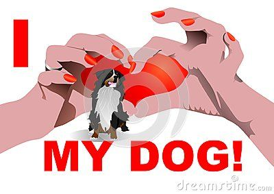 I love my dog isolated on white with Heart shaped hand position and St. Bernard.  Vector illustration.