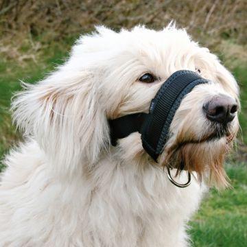 Trixie Köpek Ağızlık XXL Danua 28x38 cm