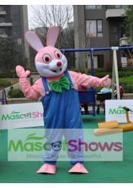 Costume de Mascotte de lapin Robbie