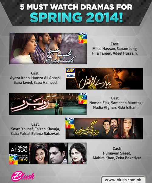 5 Must Watch Pakistani Dramas for 2014!