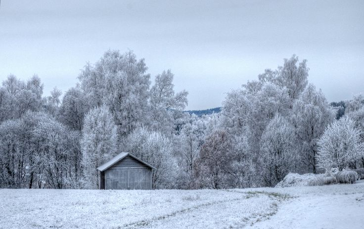 Frosty day in Siljansnäs