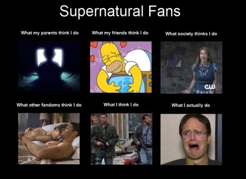 Supernatural Fans. Never seen anything more accurate.