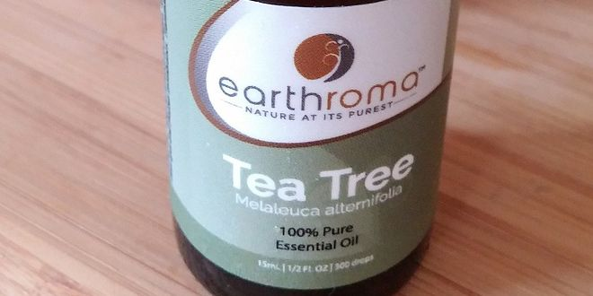 El árbol de té, también conocido como melaleuca, es bien conocido por sus poderosas propiedades antisépticas y la capacidad de tratar heridas. El aceite de árbol de té se conoce por sus siglas (TTO), el aceite esencial volátil derivado principalmente de la planta nativa de Australia Melaleuca alternifolia ha sido ampliamente utilizado en toda Australia… Leer más...