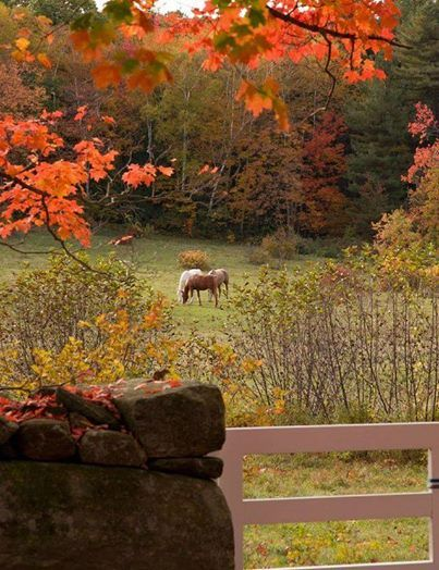 1349 best autumn images on pinterest seasons of the year for Where is the horseshoe in country living october 2017