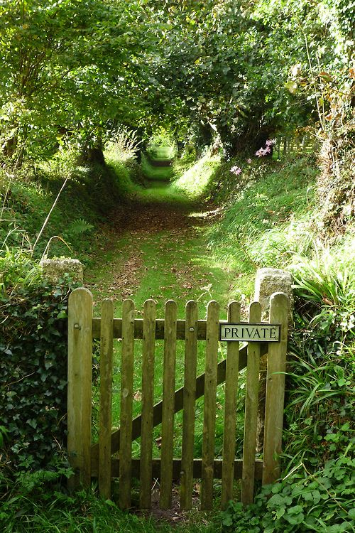 Outside the gate - Glendurgan, Cornwall, England by Blue Pelican