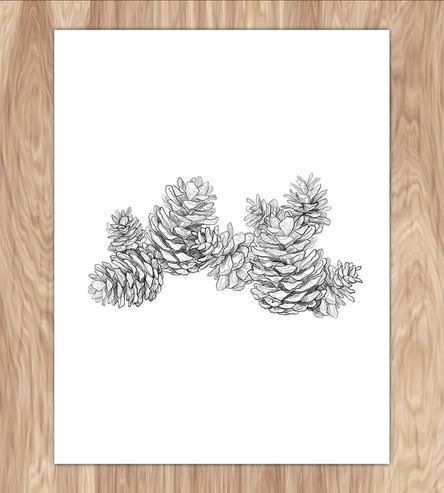 Pinecones Art Print by Fin and Feather Art on Scoutmob Shoppe