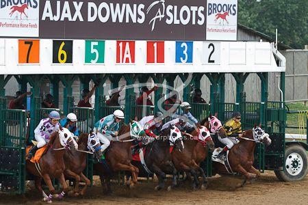 Ajax Downs casino and slots