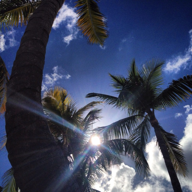 My sunny view just lounging around - Bahamas 2/2012