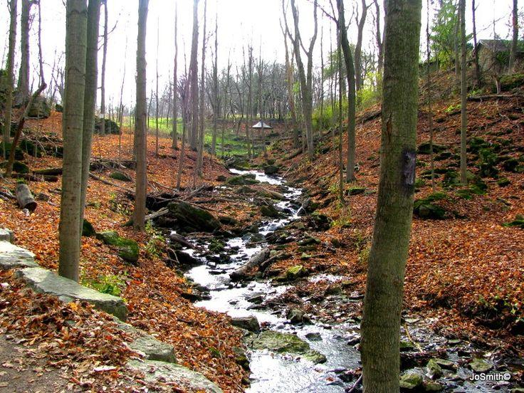 Sulphur Creek Near Burlington, Ontario