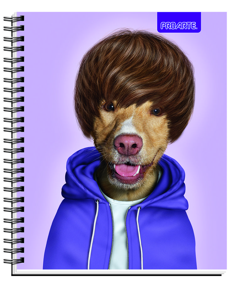 #Pets #Rocks #cuadernos #Notebooks #school #supplies Back to school #PROARTE #JB #pop #Believer #PetsRock  Notebooks Proarte license Pets Rock 2014. This line of notebooks is known Artists, singers and actors that happen to become pets. They are very funny. Meet Pets Rocks in all the best bookstores in Chile and Wallmart and Jumbo Supermarkets.