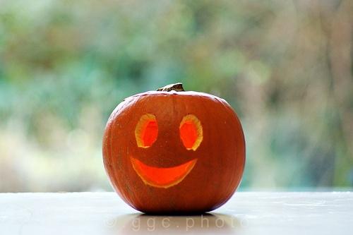mr happy pumpkin in the morning...