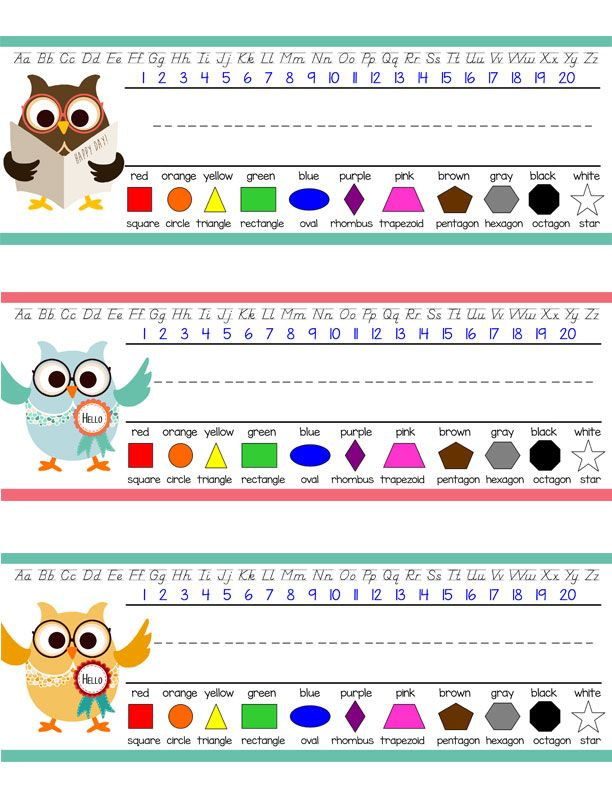 Owls Student Desk Nameplates You Personalize