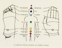 Az elme és a test nem különálló - Balázs Rozália