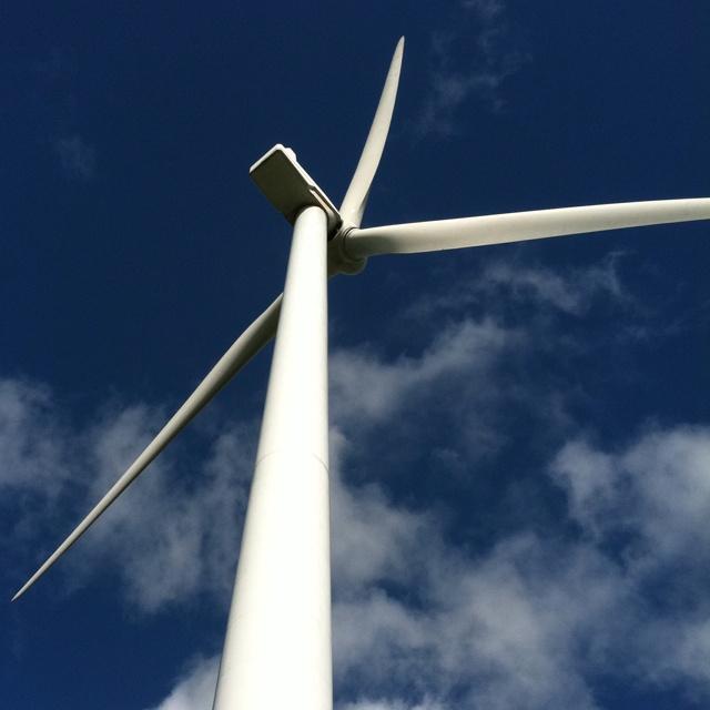 New Zealand windmill