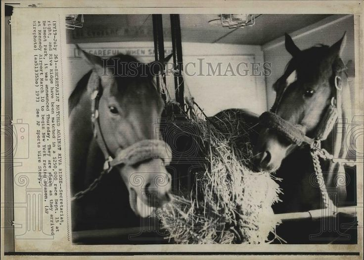 Secretariat and Riva Ridge
