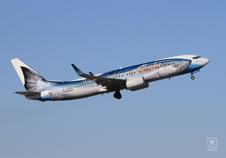 Alaska Airlines | Salmon livery | Source: http://www.planes.cz