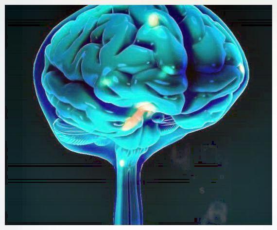 memory power of human brain # | Increase memory, Brain ...