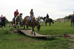 Extreme Horse Trails....by Mark Bolender.....mountain trails, extreme trails a growing sport...Mark is one of the best extreme trail trainers.....