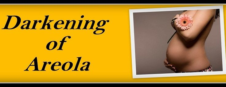 Darkening of Areola during Pregnancy In early pregnancy, the skin around your nipples may get darker. Moreover, the bumps on the areolas may look more prominent. This can happen as early as a week or two after conception.http://loveurchild.com/darkening-of-areola-during-pregnancy/