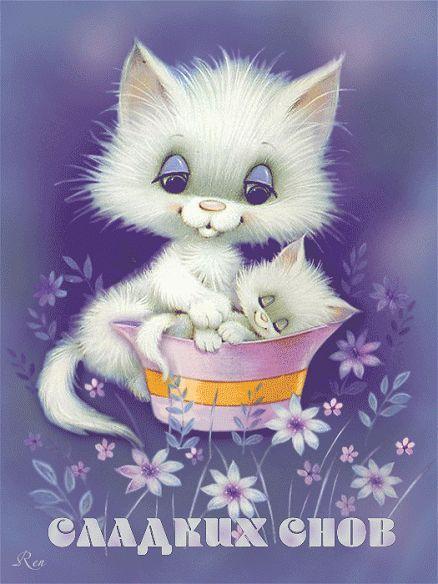 Сладких снов котик картинки с надписями, картинки литературе смешные