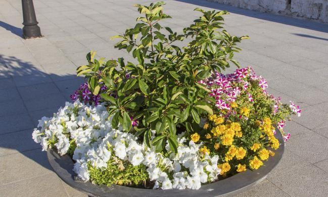 7 ideas encantadoras para decorar un patio peque o ideas - Ideas para decorar un patio pequeno ...
