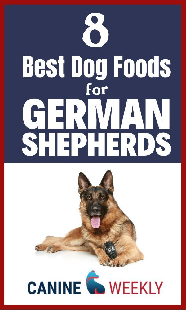 8 Best Dog Food For German Shepherds 2020 Reviews Dog Food