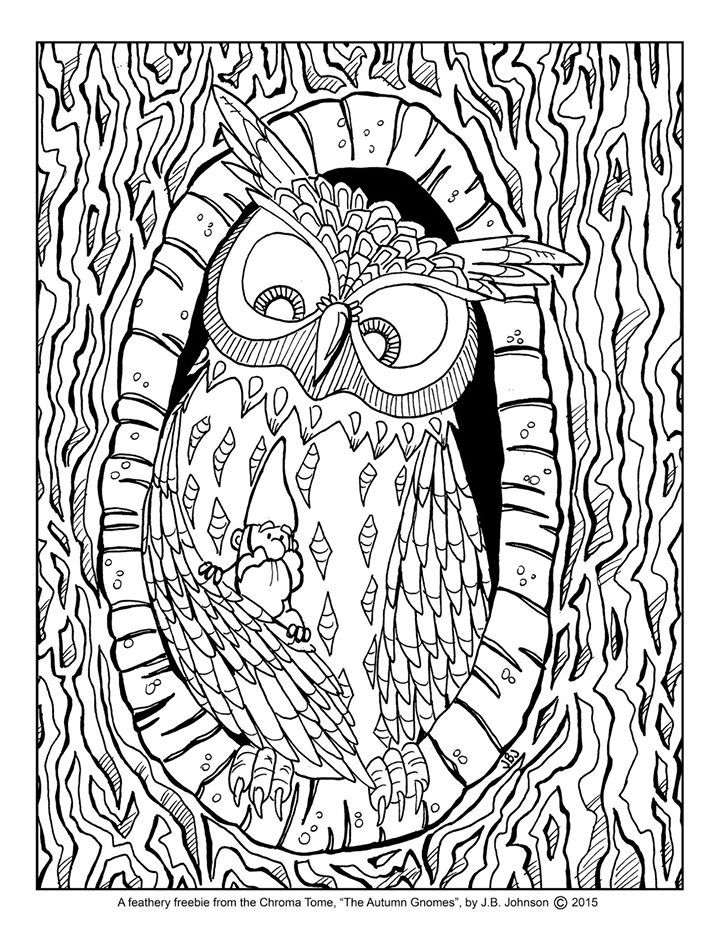 2047 best Buhos images on Pinterest Barn owls, Drawing owls and Owls - copy coloring pages of cartoon owls