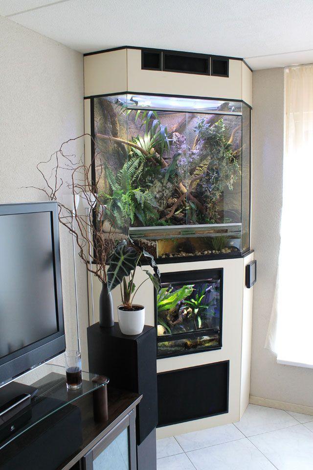 display vivariums