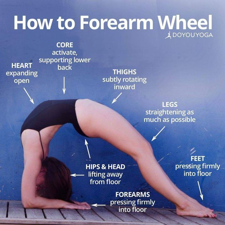 Yoga poses https://www.musclesaurus.com
