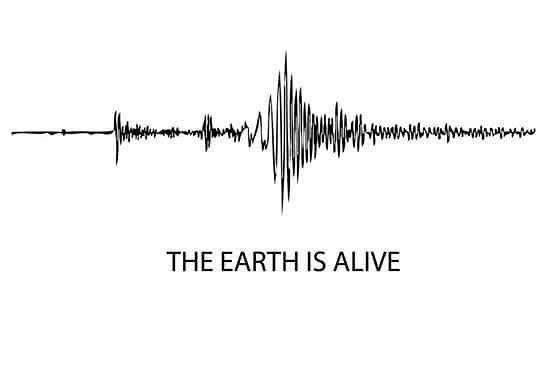 #earthisalive #quagga