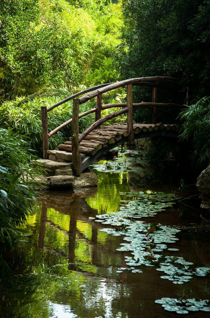 Best 25 zilker park ideas on pinterest barton springs for Barton creek nursery
